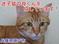 01159.jpg