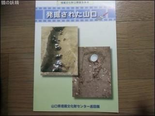 s-CIMG0085.jpg