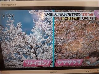 s-DSCF7073.jpg